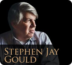 Stephen jay gould essays
